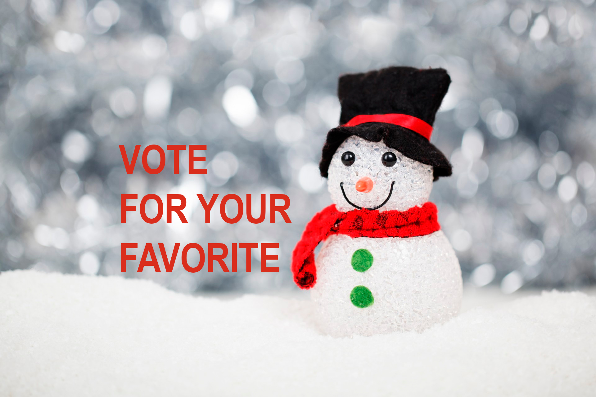 VOTE for Your Favorite West Asheville Holiday Windows